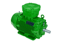 W22X IE2 (HIGH EFFICIENCY) ATEX EX-  Explosionsgeschützter Motor